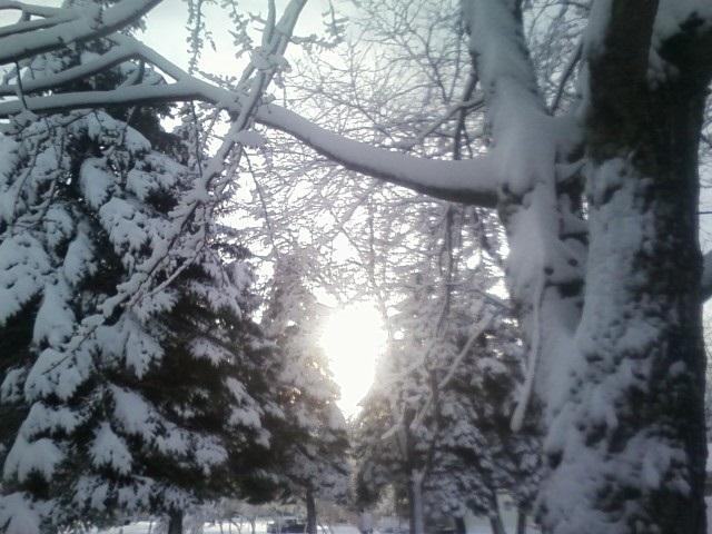 WinterSunrise11302011